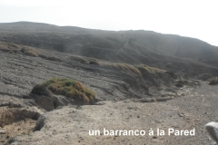 Fuerteventura40