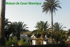 Lanzarote13