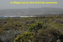 Lanzarote25