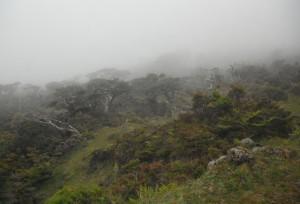 2014-05-27 16h21 vers lac de Paul Pico Açores