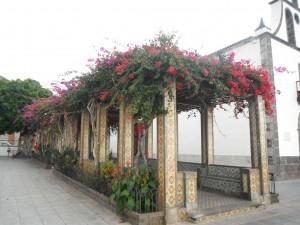 2014-01-12 17h42 eglise pergola Tazacorte Palma