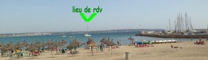 2014-09-09 17h46 Ericante devant la plage de Can Pastilla et son port baie de Palma Majorque Baléares