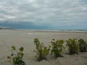 2015-09-29 11h17 plage de Giulianova