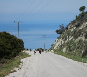 2016-04-23 11h55 Myrtos